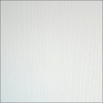 Белый Фасадный 101 PR ЛДСП (2800х2070х10) Kronospan РБ