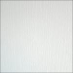Белый Фасадный 101 PR ЛДСП (2800х2070х18) Kronospan РБ