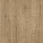 Дуб арлингтон натуральный / Дуб Гамельтон натуральный H3303 ST10Столешница R3 (U) (4100х920х38) EGGER